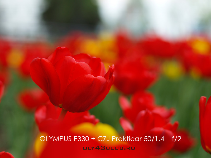http://oly43club.ru/_images/prakticar/Prakticar_bohe_1_res.jpg